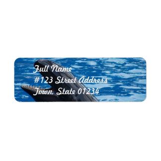 Etiqueta de correo falsa de la orca etiqueta de remite