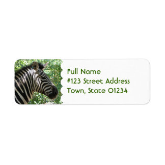 Etiqueta de correo linda de la cebra etiqueta de remite