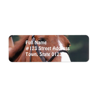 Etiqueta de correo linda del caballo de la castaña etiquetas de remite
