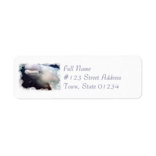 Etiqueta de correo linda del remite de la ballena  etiquetas de remite