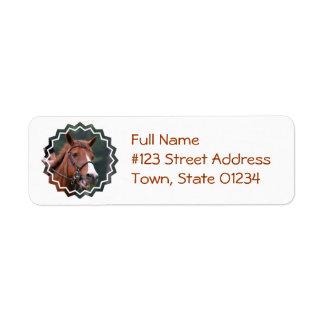 Etiqueta de correo linda del remite del caballo de etiqueta de remite