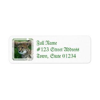Etiqueta de correo manchada del guepardo etiqueta de remitente