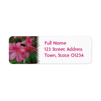 Etiqueta de correo rosada de la azalea etiqueta de remite