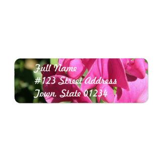 Etiqueta de correo rosada del guisante de olor etiqueta de remitente