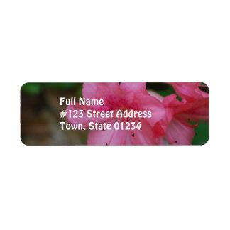 Etiqueta de correo rosada del remite de la azalea etiqueta de remitente