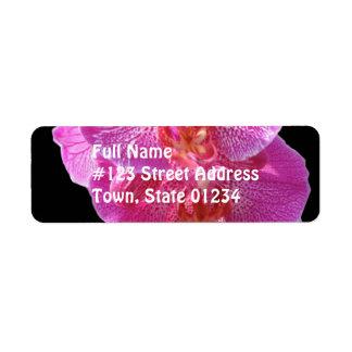 Etiqueta de correo rosada floreciente del remite d etiquetas de remite