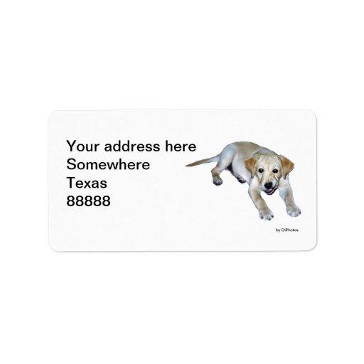 Etiqueta de dirección amarilla del perrito de Labr