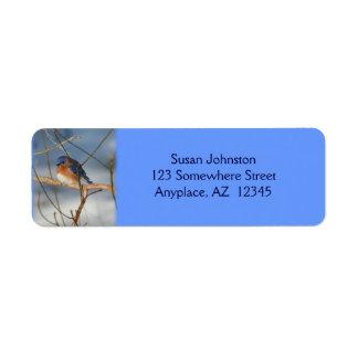 Etiqueta de dirección animal del Bluebird del