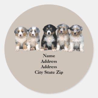 Etiqueta de dirección australiana de los perritos