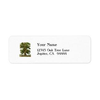Etiqueta de dirección de encargo del roble del vin
