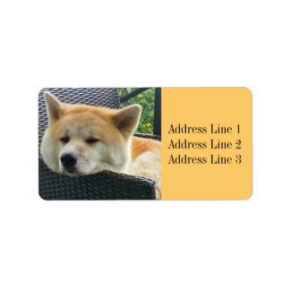 Etiqueta de dirección de la foto de Akita