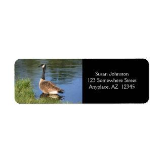 Etiqueta de dirección de la pintura del ganso de