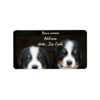 Etiqueta de dirección de los perritos del perro de