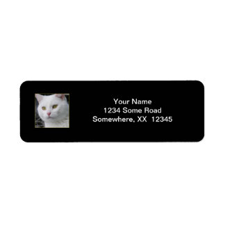 Etiqueta de dirección de Sr. Cat Portrait