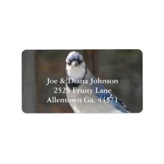 Etiqueta de dirección del arrendajo azul