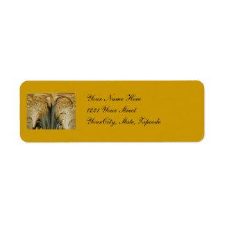 Etiqueta de dirección del extracto del hongo de