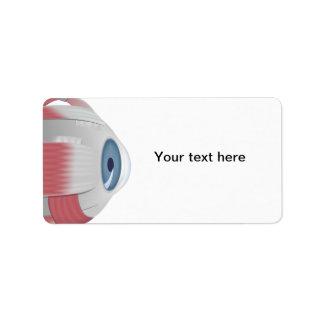 Etiqueta de dirección del ojo del globo del ojo