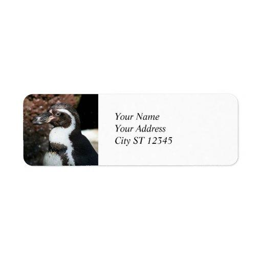 Etiqueta de dirección del pingüino