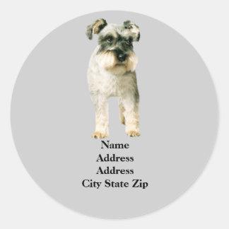 Etiqueta de dirección del Schnauzer miniatura