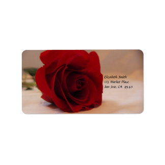Etiqueta de dirección elegante del rosa rojo