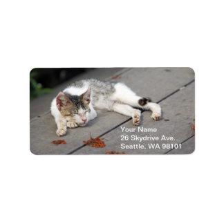 ¡Etiqueta de dirección - gato Zzz el dormir! Etiquetas De Dirección