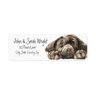 Etiqueta de dirección negra del perro del labrador