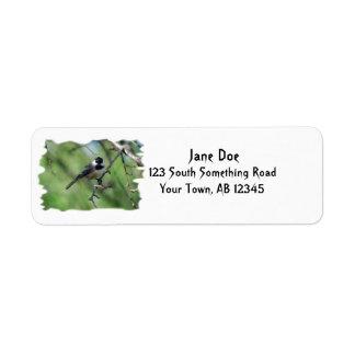 etiqueta de dirección Negro-capsulada del Chickade