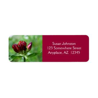 Etiqueta de dirección roja de la flor de la gencia