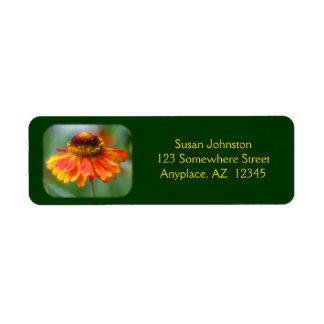 Etiqueta de dirección soñadora de la flor del Zinn