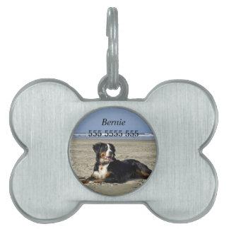 Etiqueta de encargo de la identificación del nombr placas de mascota