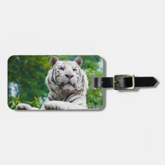 Etiqueta de encargo del equipaje del tigre blanco etiquetas de equipaje