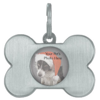 Etiqueta de encargo del hueso de perro de la foto placa de nombre de mascota
