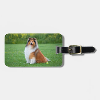 Etiqueta de encargo hermosa del equipaje del perro etiqueta para equipaje
