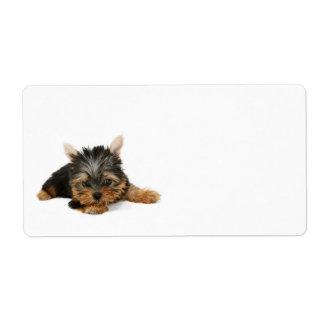 Etiqueta de envío del perrito de Yorkshire Terrier