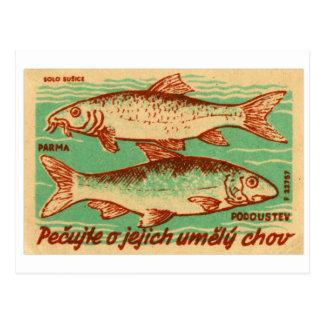 Etiqueta de la caja del partido de los pescados de tarjeta postal