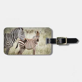 Etiqueta de la cebra y del equipaje del bebé