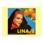 Etiqueta de la fruta del vintage de Linaje Tarjeta Postal