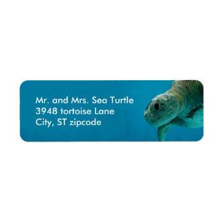 etiqueta de la tortuga de mar etiquetas de remite