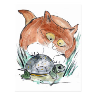 ¡Etiqueta de la tortuga - el gatito dice que usted Postales
