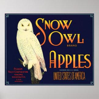 Etiqueta de las manzanas del búho de la nieve del póster