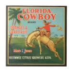Etiqueta de los agrios del vaquero de la Florida d Teja