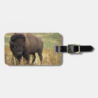 Etiqueta de madera del equipaje del bisonte etiquetas de maletas