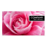 Etiqueta del borde - Camelia rosado Tarjetas De Visita