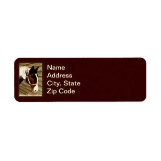 Etiqueta del caballo etiqueta de remite
