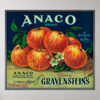 Etiqueta del cajón de Anaco Apple Póster