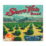 Etiqueta del cajón de la fruta cítrica de la marca lona estirada galerias