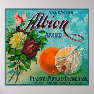 Etiqueta del cajón de la fruta cítrica de la marca póster