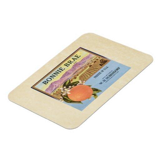 Etiqueta del cajón de la fruta de los naranjas del rectangle magnet