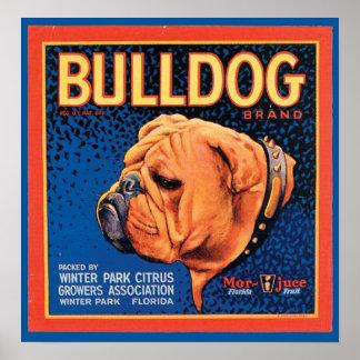 Etiqueta del cajón de la marca del dogo del vintag poster