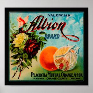 Etiqueta del cajón de la producción de los naranja impresiones
